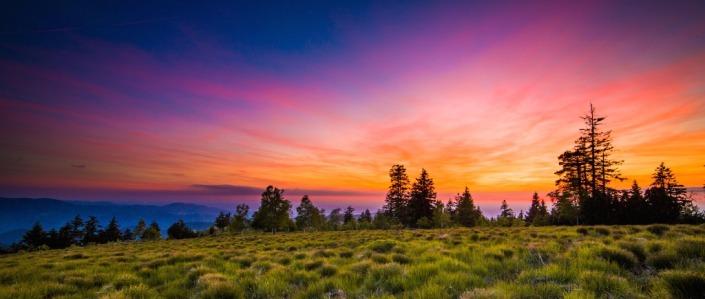 Black Forest Adventures Summer Film Sunset